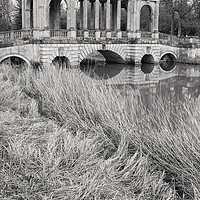 Buy canvas prints of Palladian Bridge, Stowe by Graham Custance