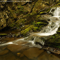 Buy canvas prints of Waterfall in Spring 3 by Darren Whitehead