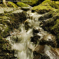 Buy canvas prints of Waterfall in Spring 8 by Darren Whitehead