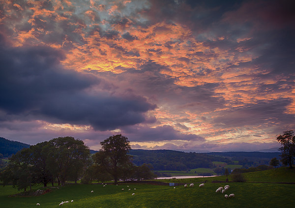Esthwaite Water sunset Canvas Print by Graham Moore