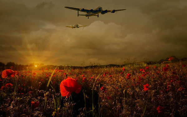 Lest We Forget Canvas print by Jason Green