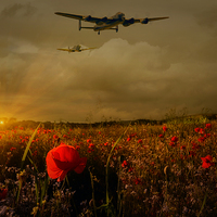 Buy canvas prints of Lest We Forget by Jason Green