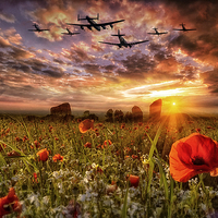 Buy canvas prints of   Lest We Forget RAF by Jason Green