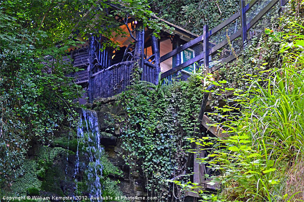 Shanklin Chine, Isle Of Wight Canvas Print by William Kempster