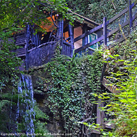 Buy canvas prints of Shanklin Chine, Isle Of Wight by William Kempster
