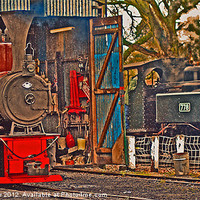 Buy canvas prints of Baldwin 778 and Elf by William Kempster