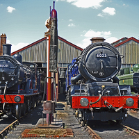 Buy canvas prints of Didcot Engine Shed by William Kempster