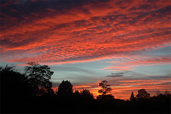 Old Catton, Norwich, Mackerel Sky, Sunset Canvas print by David Woodcock