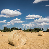 Buy canvas prints of Hay Bales in a Norfolk Field by David Woodcock
