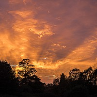 Buy canvas prints of Old Catton, Norwich, Sunset Over Catton Park by David Woodcock