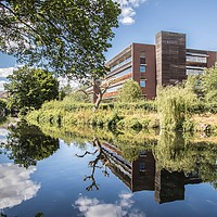 Buy canvas prints of Norwich, River Wensum Reflection by David Woodcock