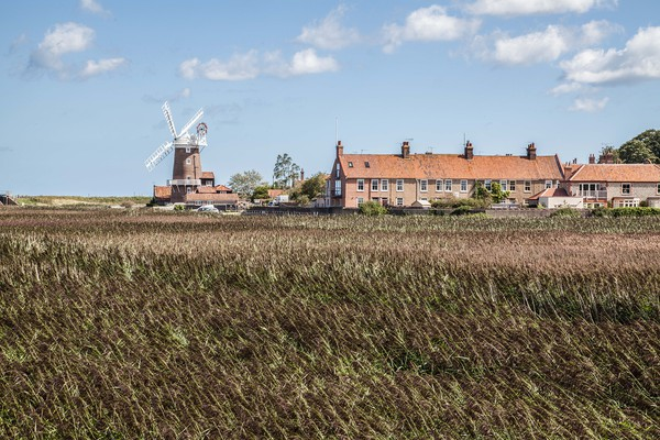 Cley Windmill and Marshes, Norfolk Print by David Woodcock