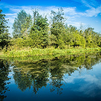 Buy canvas prints of Reflections in the River Bure at Horstead, Norfolk by David Woodcock