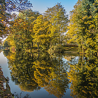 Buy canvas prints of River Wensum Reflection, Norwich, Norfolk by David Woodcock