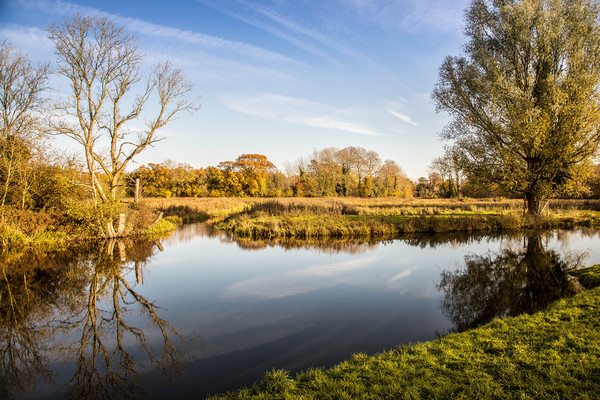 River Bure, Horstead Canvas print by David Woodcock