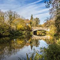 Buy canvas prints of Bridge, Horstead by David Woodcock