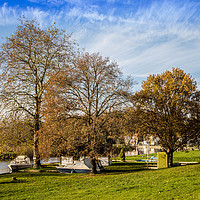 Buy canvas prints of Island at Coltishall Common, Norfolk by David Woodcock