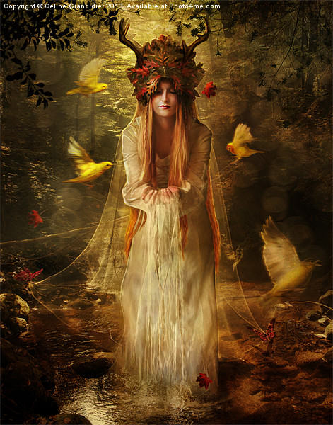 Lady of the Forest Print by Celine B.