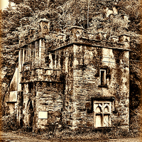 Buy canvas prints of The Forgotten Gate house by M Palmer