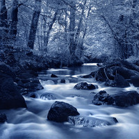 Buy canvas prints of River Yealm at Yealmpton by Darren  Galpin