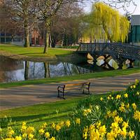Buy canvas prints of Weston Park, Sheffield by Darren  Galpin
