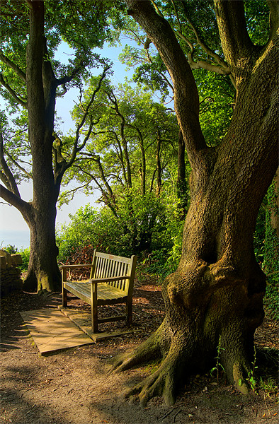 Bench with a View, Durlston Bay near Swanage Canvas print by Darren  Galpin