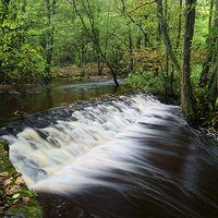 Buy canvas prints of Rivelin Falls by Darren  Galpin