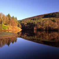 Buy canvas prints of Ladybower Reflections by Darren  Galpin