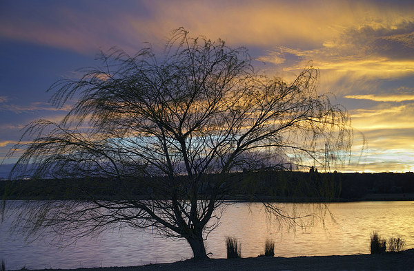 Rother Valley Sunset Canvas print by Darren  Galpin