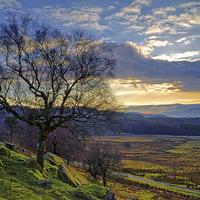 Buy canvas prints of Longshaw Estate Sunset by Darren  Galpin