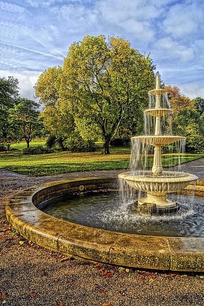 Sheffield Botanical Gardens Fountain Framed Mounted Print by Darren  Galpin