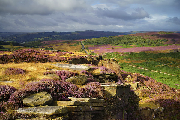 Burbage Rocks and Valley in Summer Canvas print by Darren  Galpin