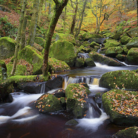 Buy canvas prints of Autumn Colours in Padley Gorge  by Darren Galpin