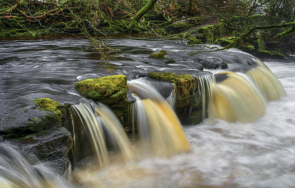 Yorkshire Bridge Falls and River Derwent Canvas print by Darren Galpin
