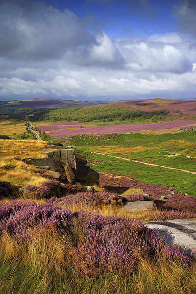 Burbage Rocks and Valley  Canvas print by Darren Galpin