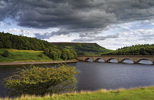 Summer at Ladybower  Canvas print by Darren Galpin