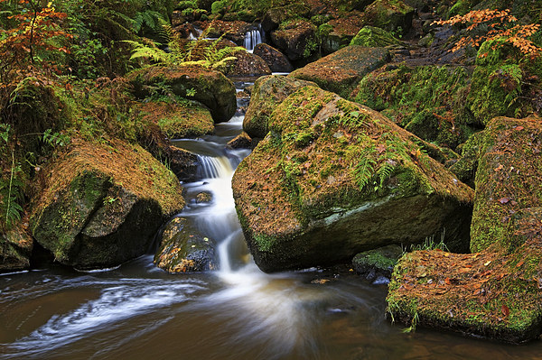 Wyming Brook Falls in Autumn Canvas print by Darren Galpin