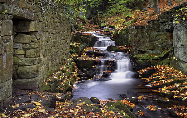 Lumsdale Waterfalls and Mill  Canvas print by Darren Galpin