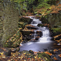 Buy canvas prints of Lumsdale Waterfalls and Mill  by Darren Galpin
