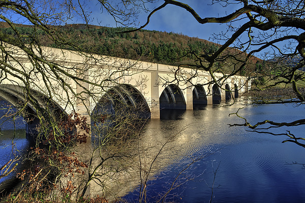 Ashopton Viaduct through the Trees Canvas print by Darren Galpin