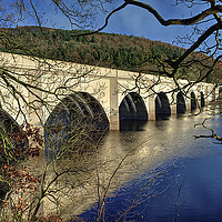 Buy canvas prints of Ashopton Viaduct through the Trees by Darren Galpin