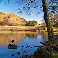 Buy canvas prints of The Banks of Blea Tarn                       by Darren Galpin