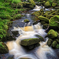 Buy canvas prints of Padley Gorge                     by Darren Galpin