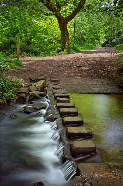 Porter Brook Stepping Stones & Falls               Canvas print by Darren Galpin