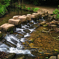 Buy canvas prints of Endcliffe Park Stepping Stones and Falls           by Darren Galpin