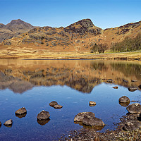 Buy canvas prints of Blea Tarn Reflections                              by Darren Galpin