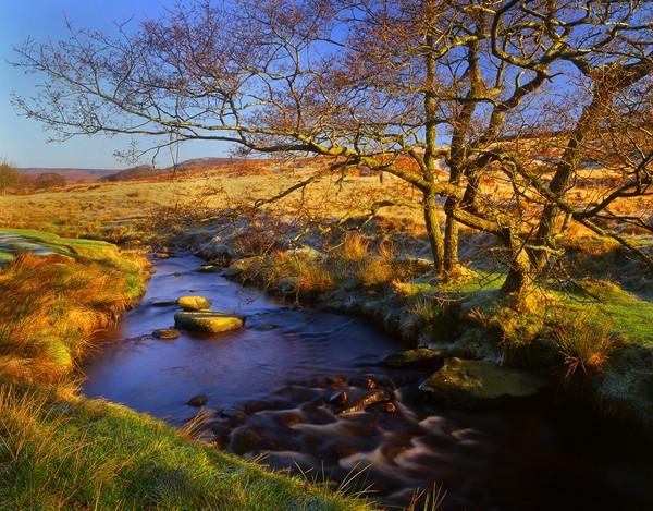 Burbage Brook in Autumn Canvas print by Darren Galpin