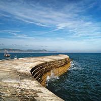 Buy canvas prints of The Cobb, Lyme Regis                       by Darren Galpin