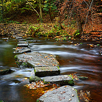 Buy canvas prints of Rivelin Stepping Stones                            by Darren Galpin