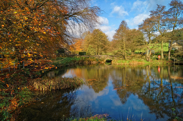 Bentley Brook Pond In Autumn                     Canvas print by Darren Galpin